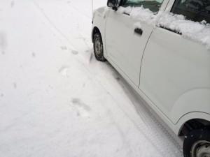 car-and-ski