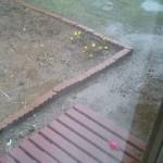 雨の日の自動車整備士の仕事