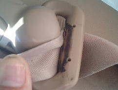 シートベルトの巻き取りが悪いときはゴミを取ってみよう