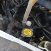 欧州車専用オイルは何が違う?軽自動車のターボに欧州車専用オイルを入れてみた